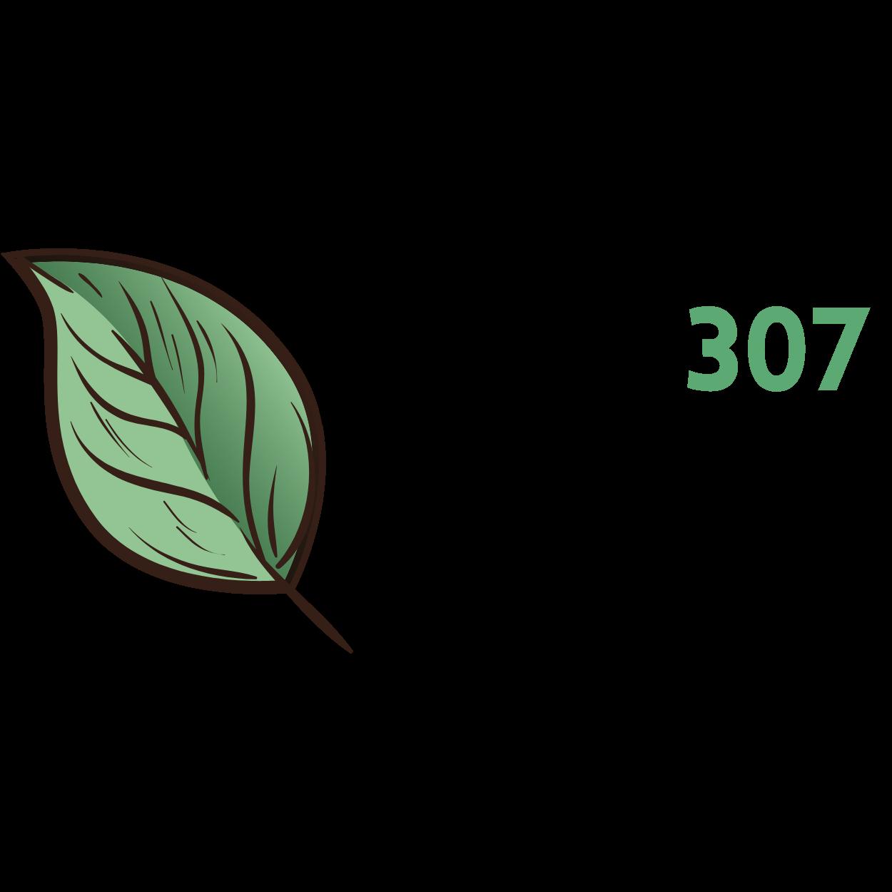 Invest307